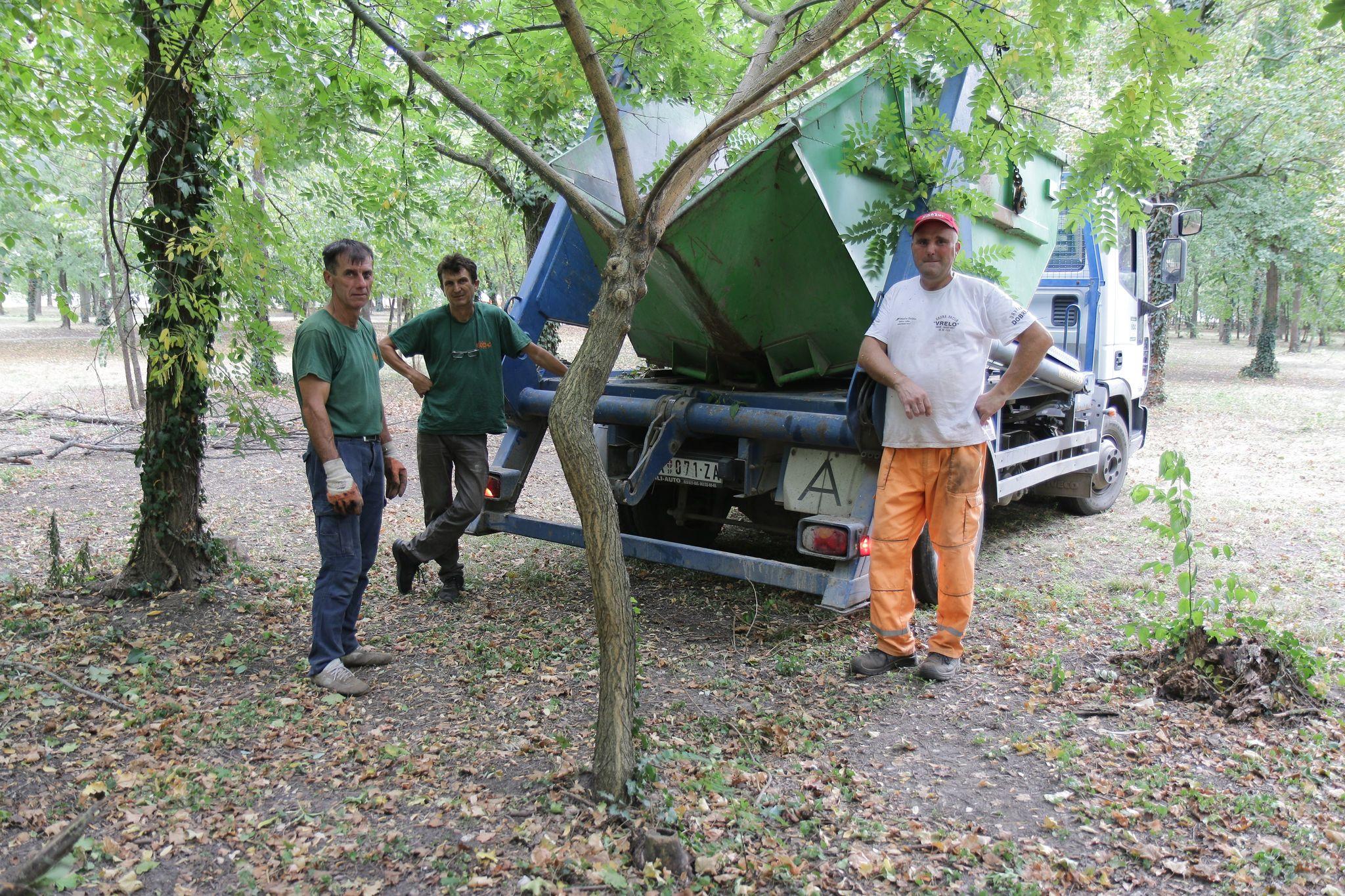 Redovno orezivanje suvih grana u opštini Žitište (FOTO)