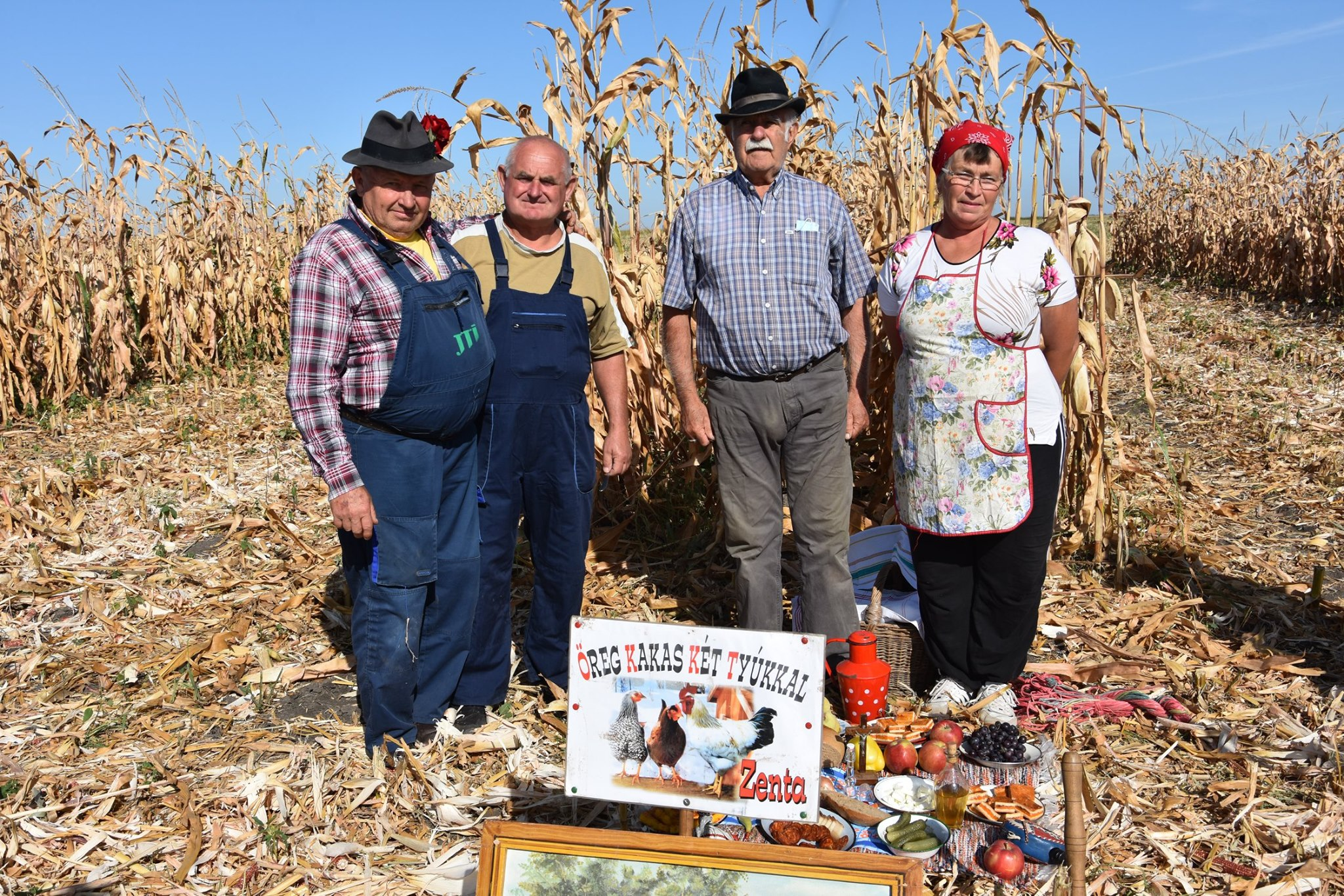 Festival kukuruza u Tordi