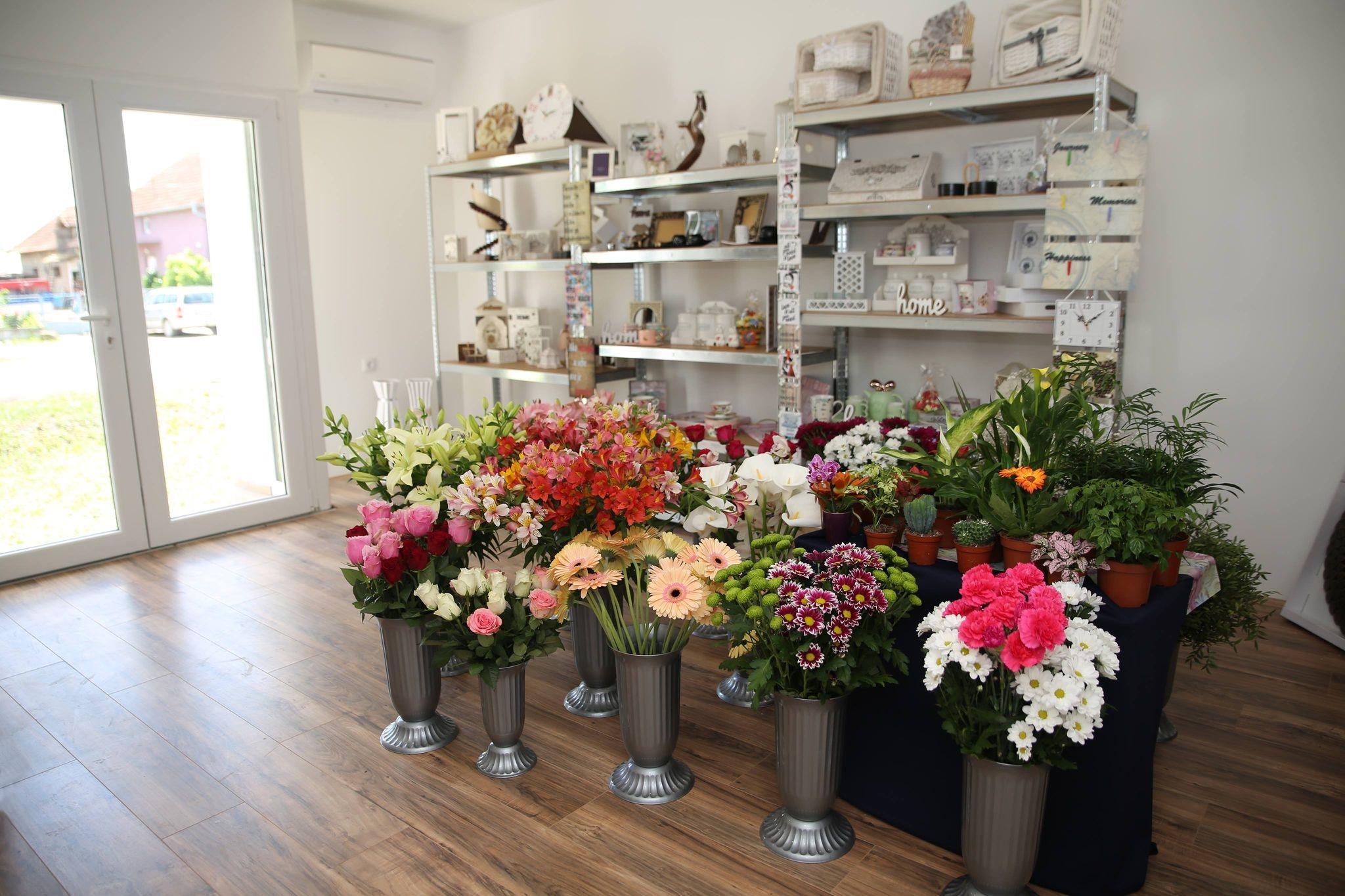 Nova daroteka i cvećara u Žitištu